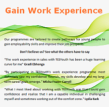 work experience, Sales, Research, Digital Marketing and Recruitment